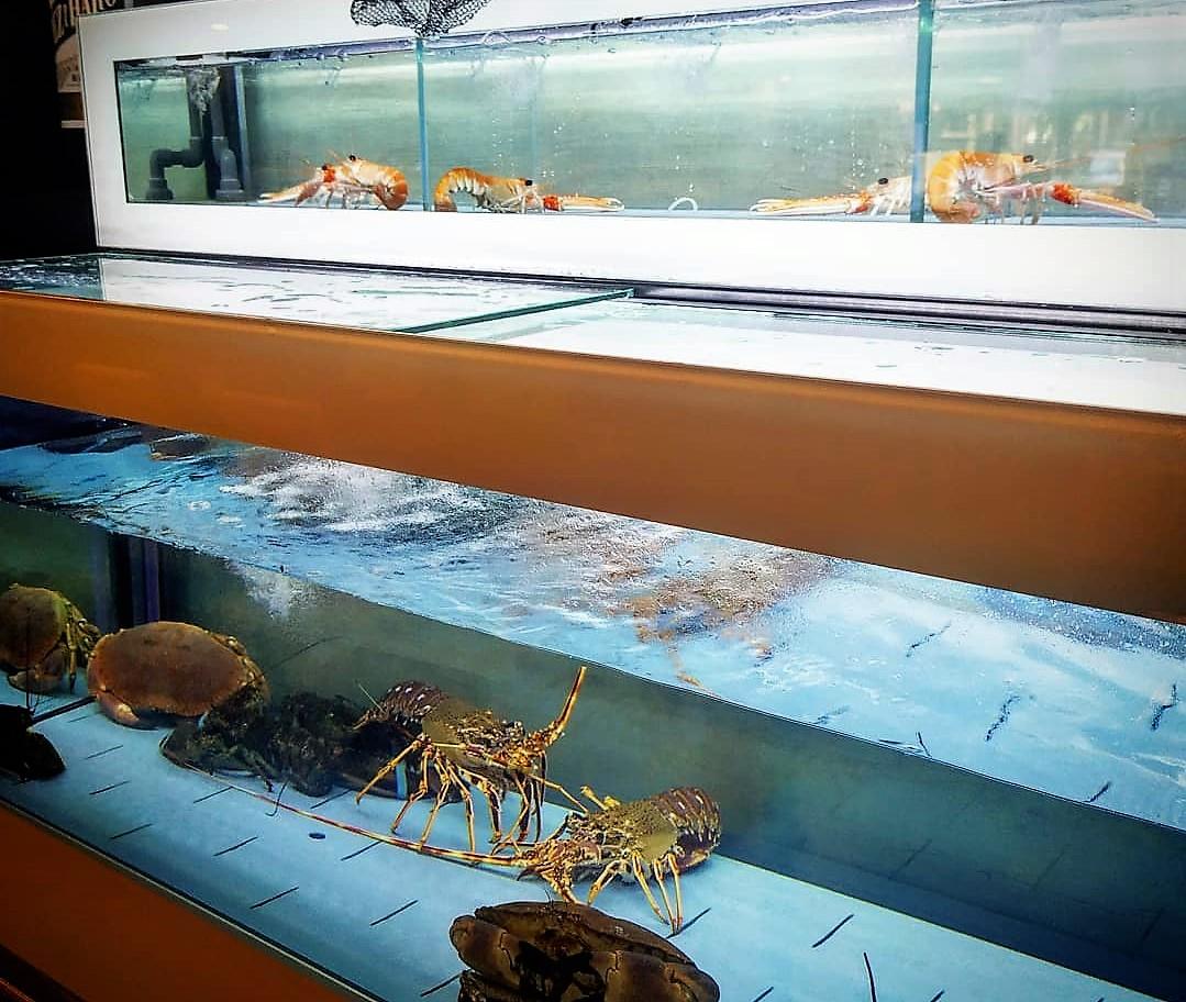 Ara a la Taverna Cal Roka tenim una nova peixera de marisc fresc, ja pots gaudir de llagostes, llamàntols, nècores i bous de mar Ara a la Taverna Cal Roka tenim una nova peixera de marisc fresc, ja pots gaudir de llagostes, llamàntols i nècores. Truca i demana ara el teu marisc fresc.